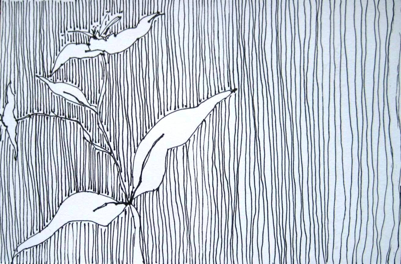 Between The Lines | Sandi Hester