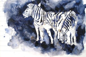 My zebra sketch